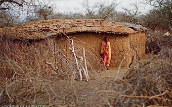 lepianka w wiosce Masajów